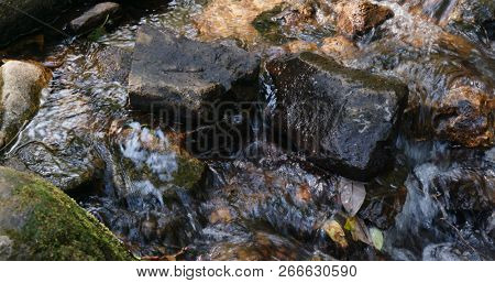 Cascade river in the forest