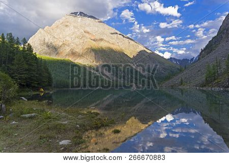 Reflection of the shore of the lake in the watery surface. The large (lower) Shavlinsky lake. Altai Mountains, Siberia, Russia. August. poster