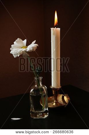 Still Life With Withering Daisy Flower In The Small Vintage Glass Bottle And Burning Candle Against