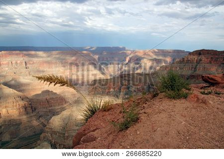 Grand Canyon West View, In Arizona, Usa