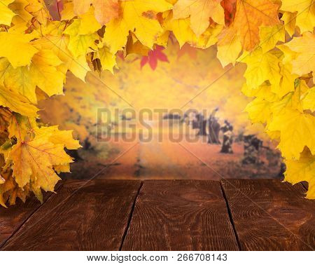 Autumn Still-life. Frame Of Golden Maple Leaves On A Autumn Background And Dark Boards