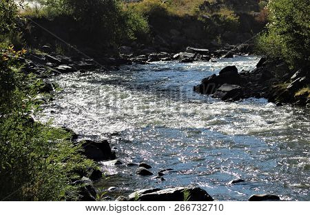 The Sun Dances Across A Cold, Fast Moving Stream In The Colorado Mountains.