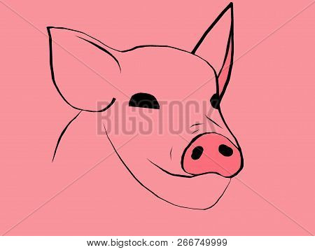 Simbol Of 2019 Year. Pig Head Isolated On White Background. Pork Meat. Design Element For Label,embl