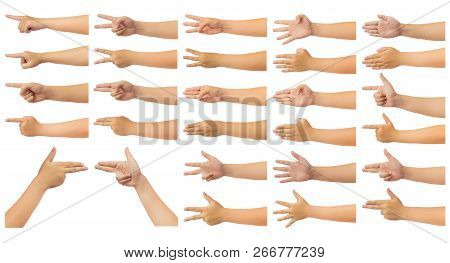 Human Hand Isolate On White Background