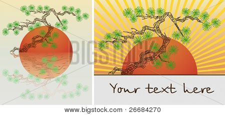 Plant in pot pine bonsai tree. Vector illustration