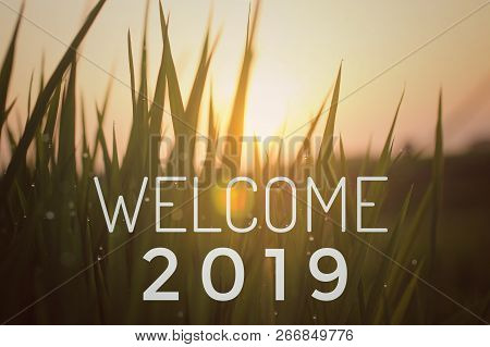 Welcome 2019-welcoming New Year 2019 With The  Light Of The Sun And Paddy Field Illustration In Blur
