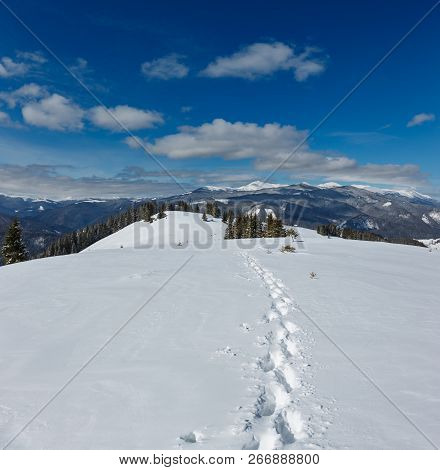 Picturesque Winter Mountain View From Alpine Path With Footprint. Skupova Mountain Slope, Ukraine, V