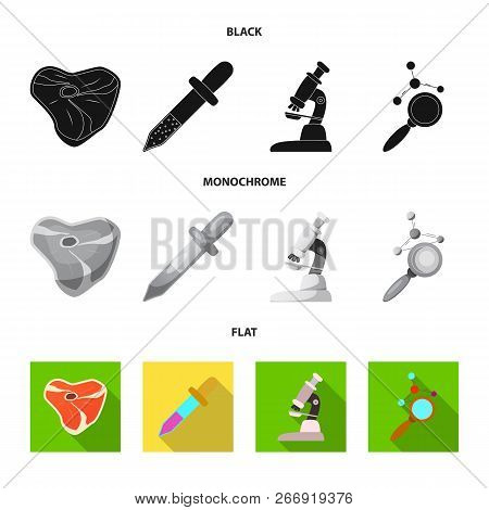 Vector Illustration Of  And  Sign. Collection Of  And  Stock Symbol For Web.