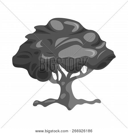 Vector Illustration Of Tree And Nature Icon. Collection Of Tree And Crown Stock Vector Illustration.