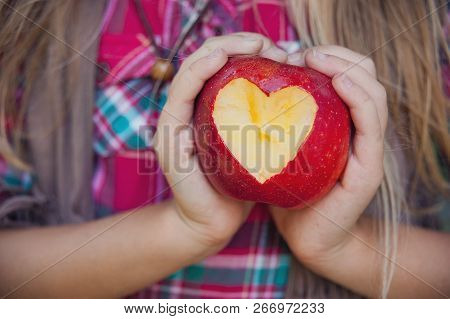 Girl Holding A Ripe Apple With Heart-shaped Cutout. Girl Eating Organic Apple In Orchard. Harvest Co