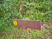 Guide Post in Khao Luang mountain in Ramkhamhaeng National Park,Sukhothai province Thailand poster
