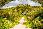 Landscape view on the beautiful Claud Monets garden, famous french impressionist painter in Giverny town in France poster