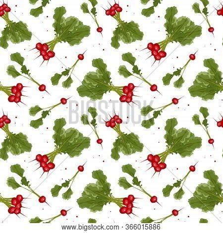 Seamless Pattern With Radish. Radish On The White Background. Organic Growing. Small Garden Radish.