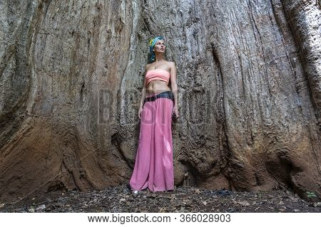 A Beautiful Girl Is Standing Inside The Trunk Of An Old Baobab Tree On The Island Of Zanzibar, Tanza