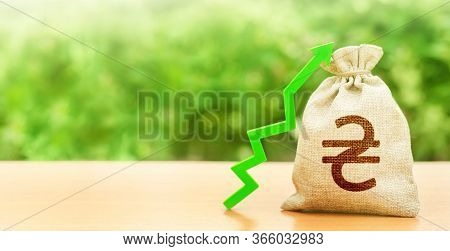 Ukrainian Hryvnia Money Bag And Green Arrow Up. Deposit Interest Rate Rise. Revaluation Of National