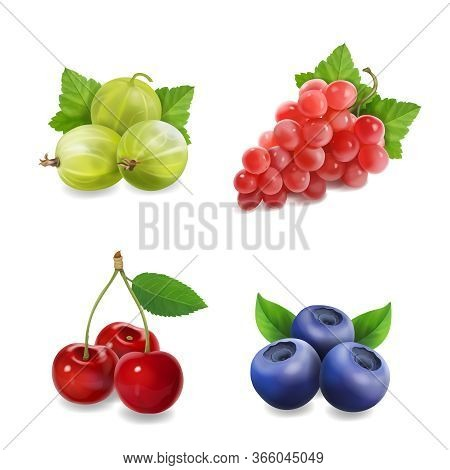 Sweet Fruits Berries. Realistic Red Grape, Cherry, Blueberry And Gooseberry Vector Illustration
