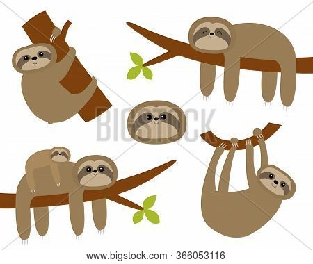 Sloth Set. Hanging On Tree Branch Leaf. Cute Cartoon Kawaii Funny Lazy Character. Mother And Baby. W