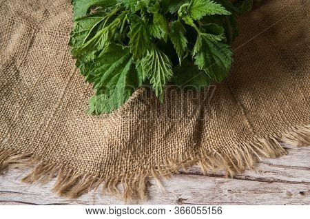 Fresh Leaves Of Nettle Dioecious Close-up On Burlap On A Wooden Background. Alternative Medicine, Me