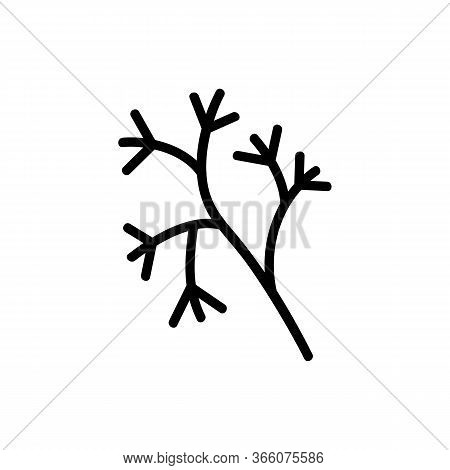 Wilted Dill Plant Icon Vector. Wilted Dill Plant Sign. Isolated Contour Symbol Illustration