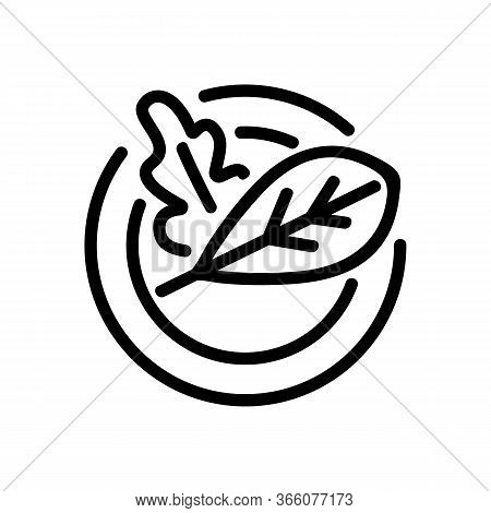 Rucola Leaves On Plate Icon Vector Outline Illustration