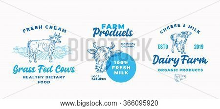 Cow Farm Dairy Logo Templates Set. Abstract Vector Cream And Milk Signs Or Symbols. Hand Drawn Domes
