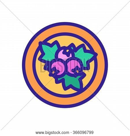 Hawthorn On Plate Icon Vector. Hawthorn On Plate Sign. Color Symbol Illustration