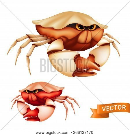 Realistic Red Tropical Crab With Big Claws And Funny Cartoon Eyes. Vector Illustration Of Cute Sea S