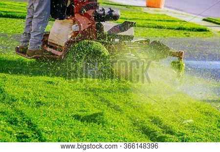 Home Garden Grass Gardener Cutting Lawn Grass With Lawn Mower