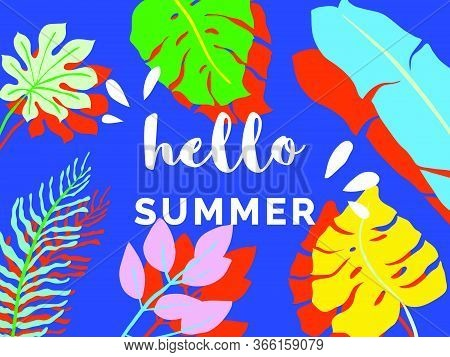 Hello Summer Banner/background Template Design, Tropical Plants On Blue Background, Colorful Vibrant