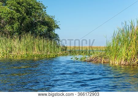 Florida Wetland, Airboat Ride At Everglades National Park In Usa. Popular Place For Tourists, Wild N