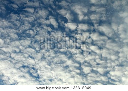 Puffy Morning Clouds