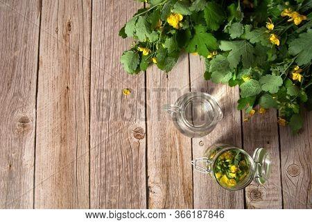 Herbal Alternative Medicine. Alcohol Tincture Of Celandine For Treatment. Celandine Leaves, Vodka In