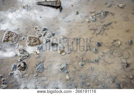 Puddle With Granite Rubble At The Bottom