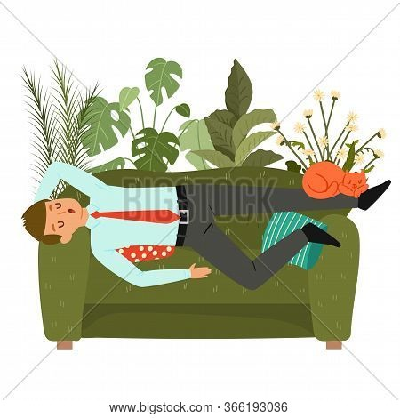 Businessman Sleeps On Couch, Tired Man Taking Nap On Sofa At Home, Laying, Relaxing, Recharge Or Res