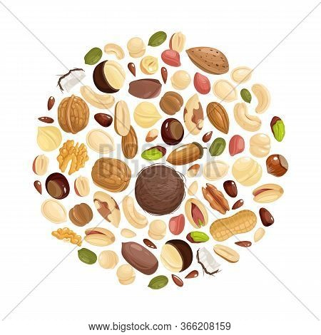 Nuts Background. Various Nuts In Circle Form. Peanut, Hazelnut And Pistachio, Cashew And Pecan, Waln
