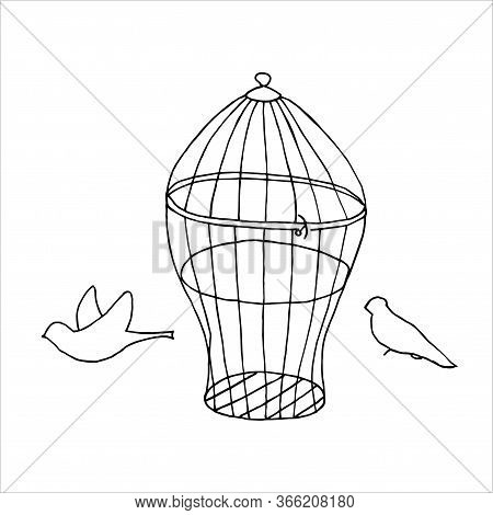 Isolated On White Background Birdcages With Birds, Vintage