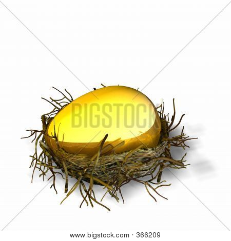 Nest Egg 4