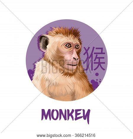 Monkey Chinese Horoscope Character Isolated On White Background. Symbol Of New Year 2028. Funny Anim