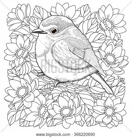 Coloring Page. Coloring Picture Of Beautiful Bird In The Flower Garden. Engraved Line Art Design For