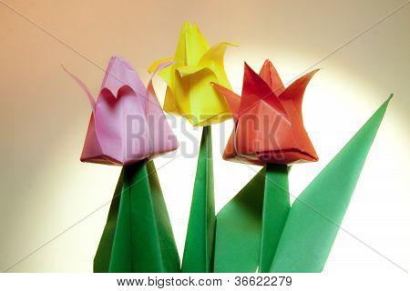 Tulip Origami Flowers