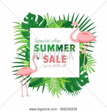 Summer Sale Vector Illustration. Cartoon Flat Banner With Jungle Palm Tree Tropical Leaf And Flaming