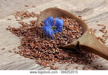 Flax Seeds In A Wooden Spoon. Flax Flower And Dry Seeds Close-up