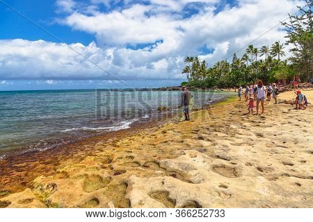Oahu Island, Hawaii, United States - August 26, 2016: Tourists Looking At The Green Sea Turtles In L