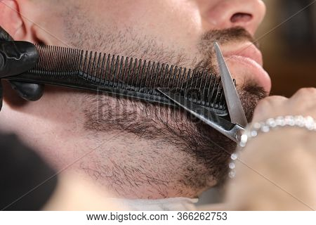 Haircut Of A Mans Beard In A Barber Shop. Professional Master Barber Shaves The Clients Beard With A