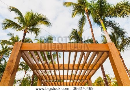Wooden Sunshade Structure And Palm Trees Are Under Blue Sky At Sunny Summer Day