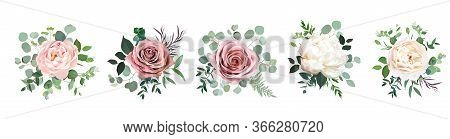 Dusty Pink Blush, White And Creamy Rose Flowers Vector Design Wedding Bouquets. Eucalyptus, Greenery