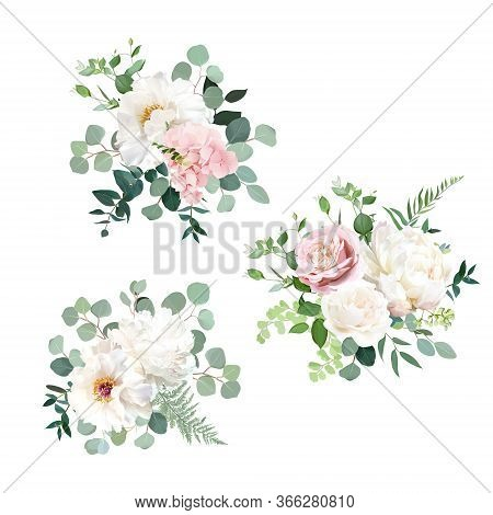 Blush Pink Rose And Sage Greenery, Ivory Peony, Hydrangea, Ranunculus Flowers, Eucalyptus Vector Flo