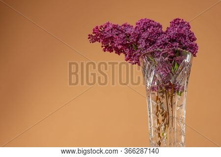 Lilac Pink Flowers In Glass Vase Isolated On Beige Background