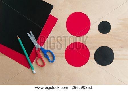 How To Make Cardboard Colourful Ladybug Diy. Homemade Craft With Ladybug Tutorial. Glue, Paper, Scis