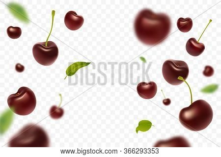 Falling Cherries With Green Leaves Isolated On Transparent Background. Realistic Ripe Red Cherry. Fl